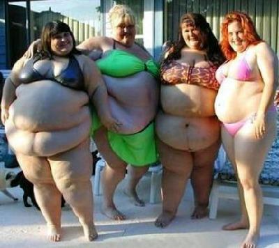 4 fat chicks